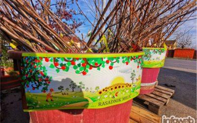 Tony vrtni centar Đakovo – Sadnice voća u Đakovu