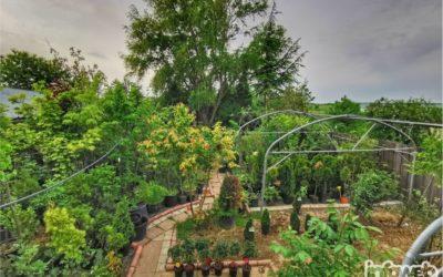 Vrtni centar Tony Đakovo – Prodaja ukrasnog bilja u Đakovu
