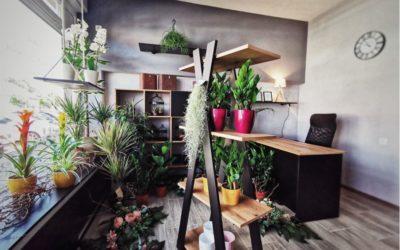 Cvjetni studio Jasmeen Đakovo – Cvjećarnica u Đakovu